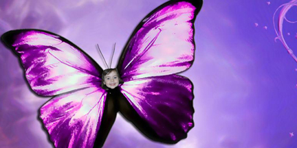 whatever-happens-butterfly-purple